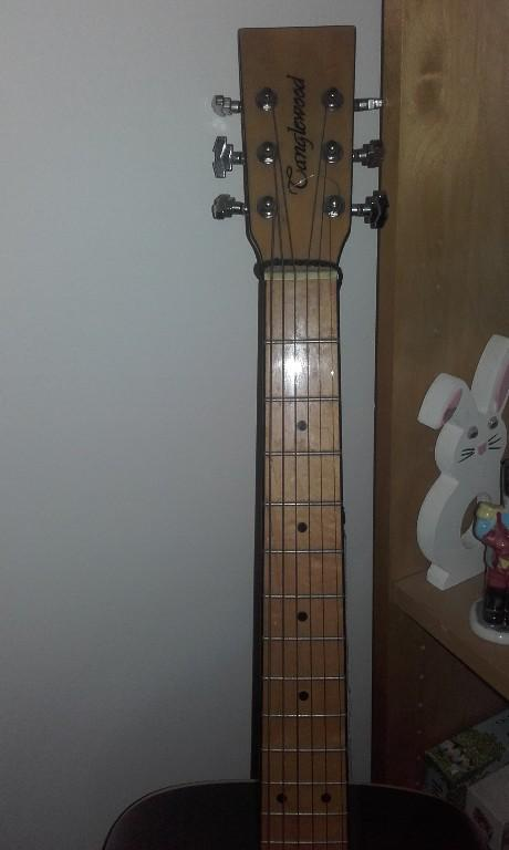 tanglewood acoustic £100