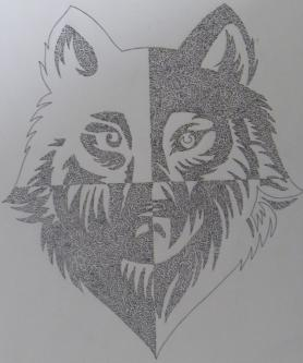 Detailed wolfs face